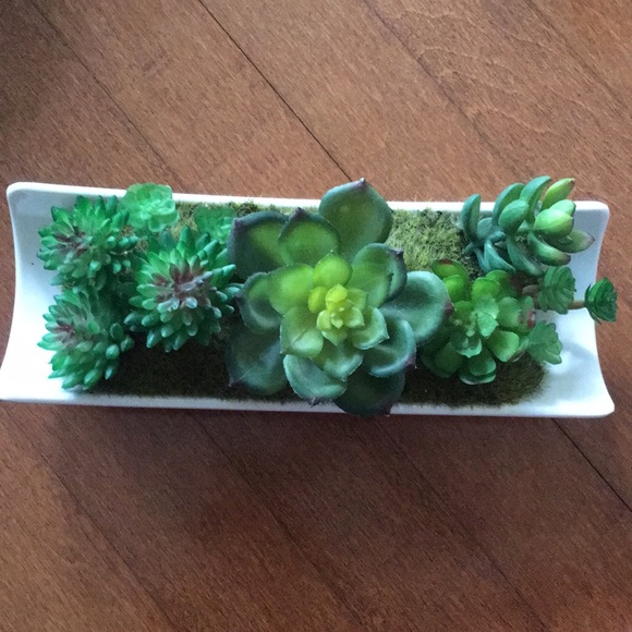 boutique Other - 🌱Artificial Succulent Display🌿